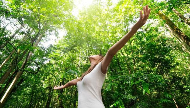 Лечение апноэ сна народными средствами