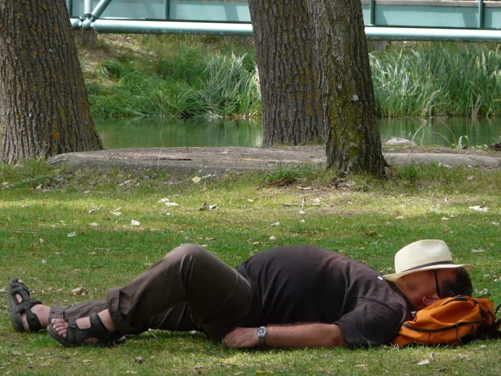 Сон после обеда.
