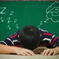 Спать и одновременно получать знания, что может быть лучше?