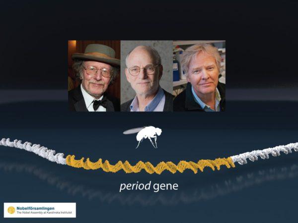 Изображение трех ученых